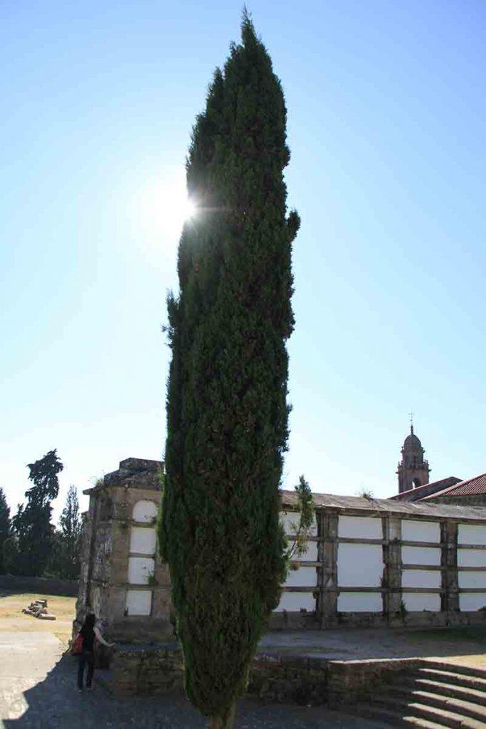 Parque de bonaval jard n bosque y cementerio en compostela for Cementerio parque jardin del sol pilar
