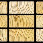 La madera de Pino no se paga en Galicia, ¿para qué vas plantar pinos?